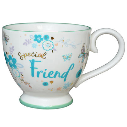 Special Friend Jumbo Teacup Gift