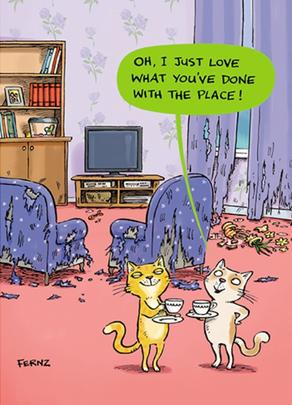 Cats Place Funny Birthday Greeting Card