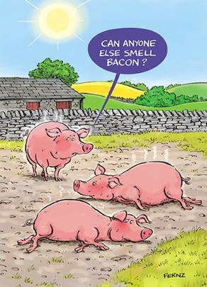 Smell Bacon Funny Birthday Greeting Card