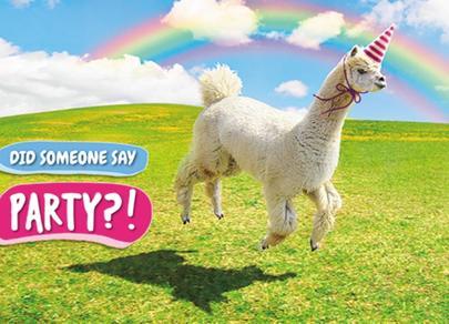 Avanti Party Llama Birthday Greeting Card