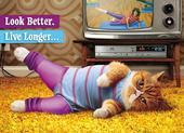 Avanti Cat Exercising Birthday Greeting Card