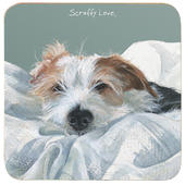 Scruffy Love Jack Russell Little Dog Laughed Coaster