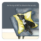 The Dog Will NOT Be Allowed On The New Sofa Little Dog Laughed Coaster