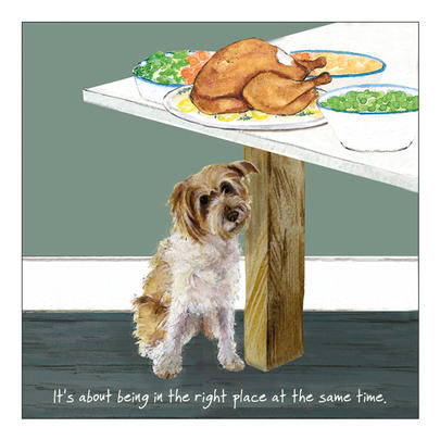 Right Place Right Time Little Dog Laughed Greeting Card