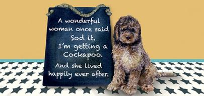 I'm Getting A Cockapoo Little Dog Laughed Greeting Card