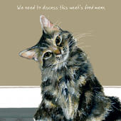 Cat Discuss Food Menu Little Dog Laughed Greeting Card