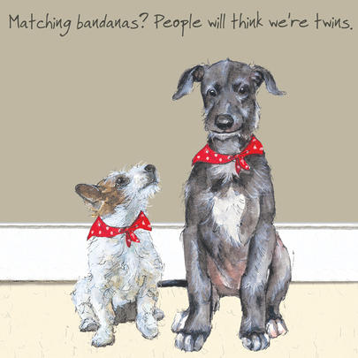 Matching Bandanas Twins Little Dog Laughed Greeting Card