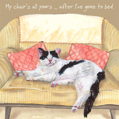 Cat Chair Bed Little Dog Laughed Greeting Card
