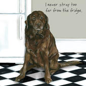 I Never Stray Far From The Fridge Little Dog Laughed Greeting Card