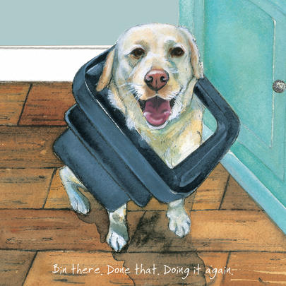 Bin There Done That Little Dog Laughed Greeting Card