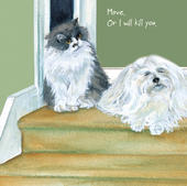 Cat Move Or I Will Kill You Little Dog Laughed Greeting Card