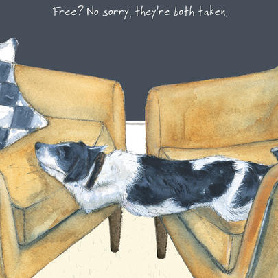 Sorry They Are Both Taken Little Dog Laughed Greeting Card