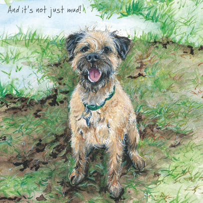 It's Not Just Mud Border Terrier Little Dog Laughed Greeting Card