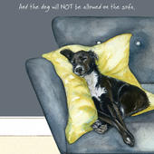 Dog Not Allowed On The Sofa Little Dog Laughed Greeting Card