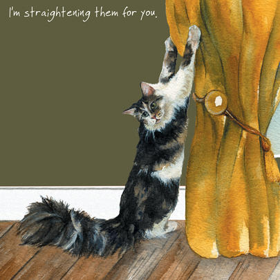 Cat Straightening Curtains Little Dog Laughed Greeting Card