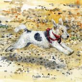 Pebble Dash Little Dog Laughed Greeting Card