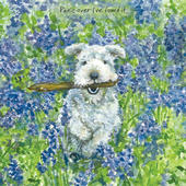 Panic Over Dog In Bluebells Little Dog Laughed Greeting Card