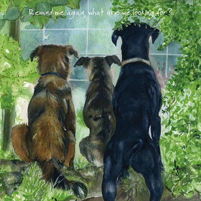 Watchdogs Little Dog Laughed Greeting Card