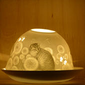 Nordic Lights Stencil Cat Bone Porcelain Candle Shade
