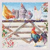Pack of 6 Winter Chickens Charity Christmas Cards Supporting Multiple Charities