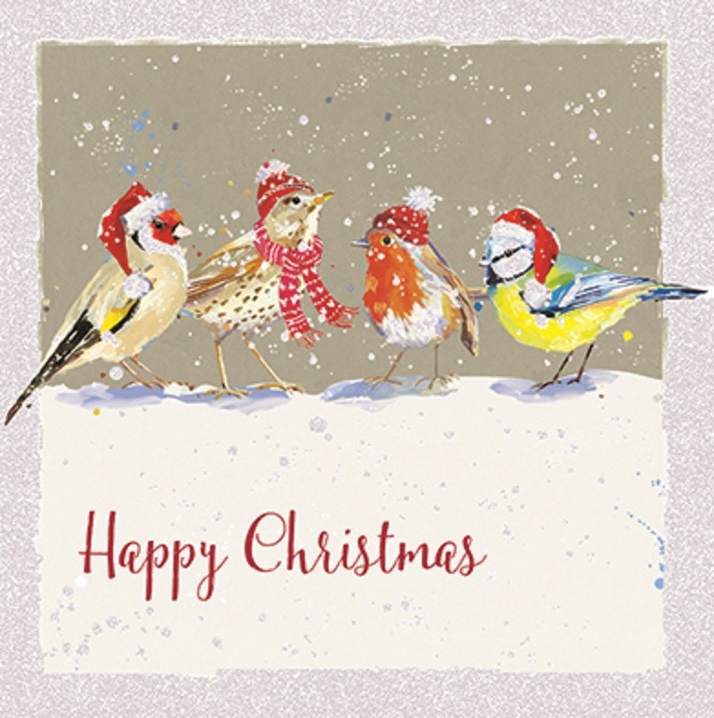 Pack Of 6 Festive Birds Charity Christmas Cards Supporting