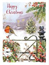 Box of 8 Christmas Robin Mini Christmas Cards