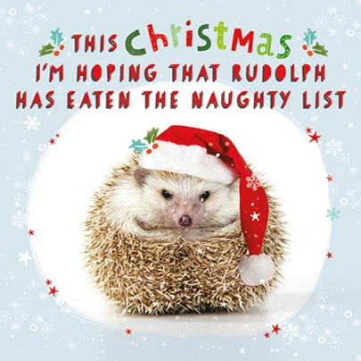 3D Holographic The Naughty List Christmas Greeting Card