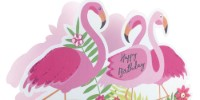 We would love to be your only option when it comes to buying greeting cards