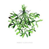 Pack of 8 Mistletoe Kisses RSPCA Charity Christmas Cards