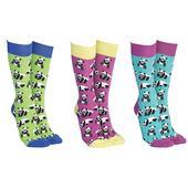 Sock Society Panda Bear Socks 3 Pairs Patterned Socks