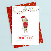 From The Dog Christmas Card Deck The Halls Range