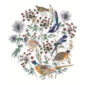 Pack of 5 Festive Birds Alzheimer's Society Charity Christmas Cards