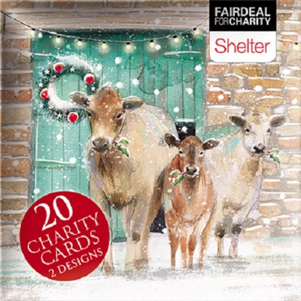 Box of 20 Fox /& Hedgehog Woodland Trust Fairdeal Charity Christmas Cards