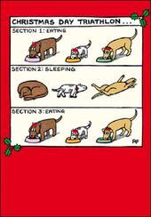 Christmas Day Triathlon Off The Leash Cartoon Pet Humour Christmas Card