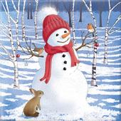 Box of 10 Snowman Christmas Cards In 2 Designs By Paper House