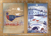 Box of 12 Birds & Winter Scene Contemporary Foiled Christmas Cards