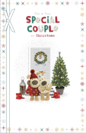 Boofle For A Very Special Couple Christmas Greeting Card