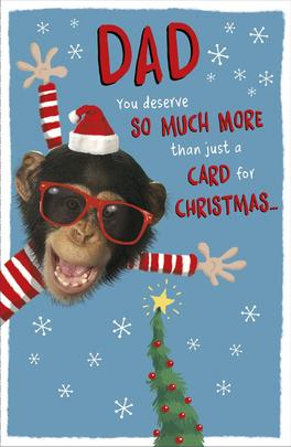 Dad You Deserve So Much More Funny Christmas Greeting Card