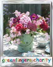 Pack of 4 Pink Flowers Greenfingers Blank Charity Greeting Cards