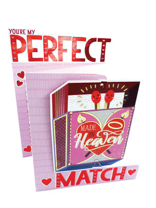 You're My Perfect Match Valentine's Day Card