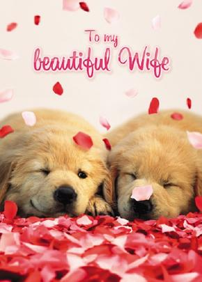 Avanti Beautiful Wife Cute Puppies Valentine's Day Greeting Card