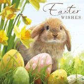 Pack of 6 Alzheimers Charity Easter Greeting Cards