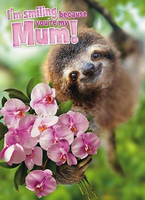 Avanti Smiling Because You're My Mum Happy Mother's Day Card