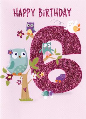 Happy Birthday Owls Girls 6th Birthday Greeting Card
