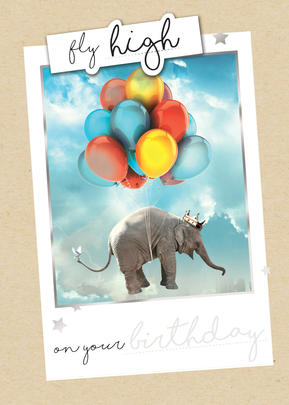 Fly High On Your Birthday Greeting Card