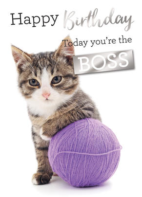 Today You're The Boss Birthday Greeting Card