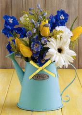 Watering Can Any Occasion Greeting Card