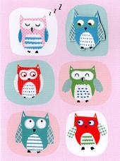 Colourful Owls Any Occasion Greeting Card