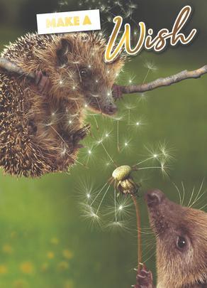 Make A Wish Photo Birthday Greeting Card