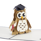 Graduation Owl Pop-Up Congratulations Greeting Card Blank Inside
